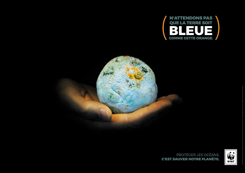 WWF-buro-bnms_AFFICHE