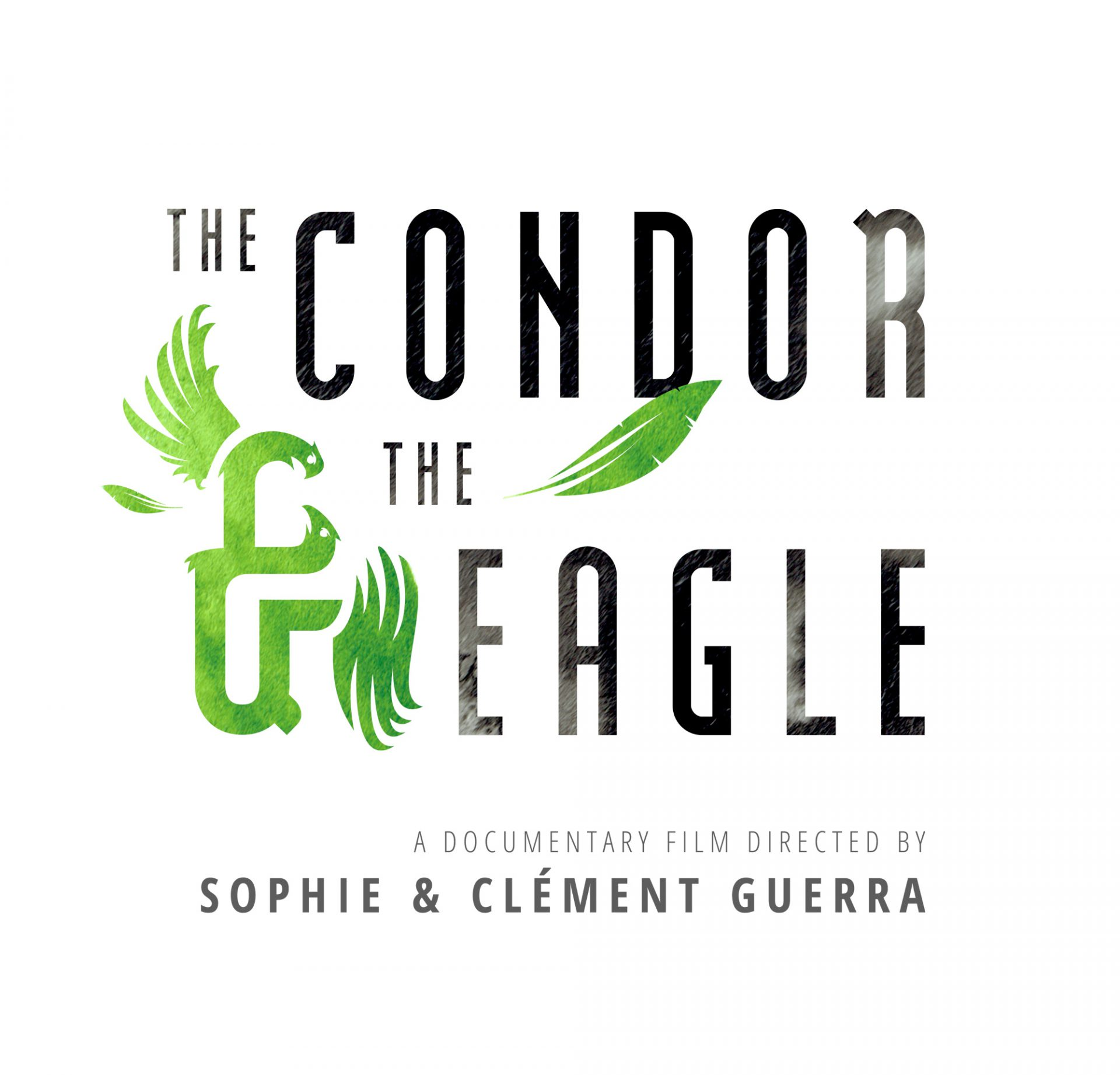 Logo the Condor and the eagle